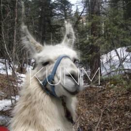 AIR: Coalition Pushing for Columbine-Hondo Wilderness Designation