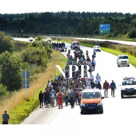 AIR: Migrants Enter Denmark, Determined To Reach Sweden